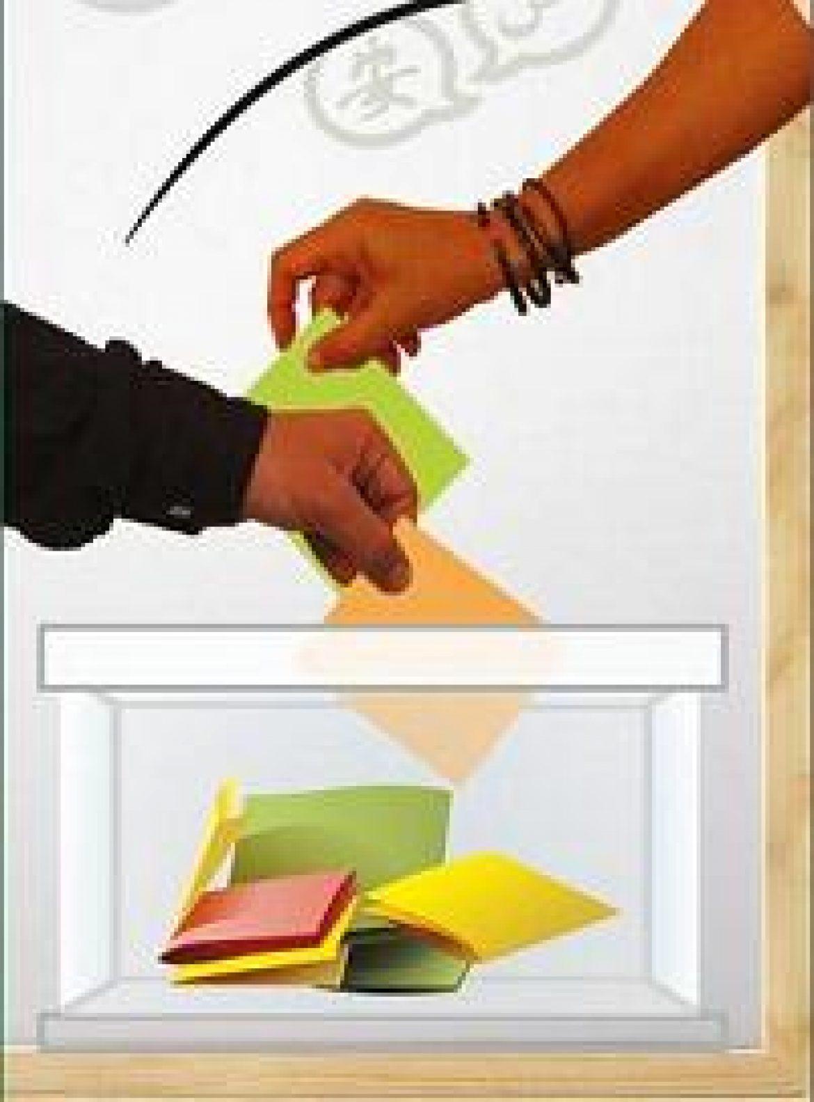 Elecciones a Consejos Escolares 2012. TÚ DECIDES